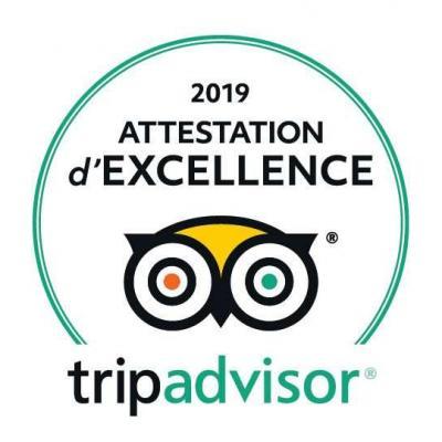 Trip advisor logo 2019